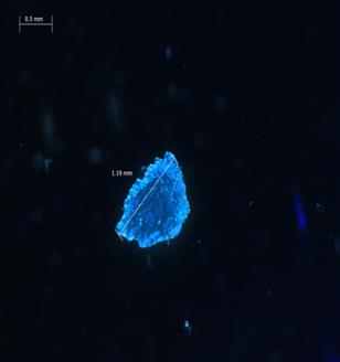 frammento di microplastica