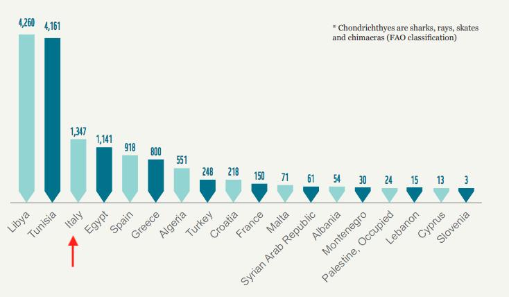 Catture dichiarate dei condroitti (in tonnellate) nel 2015.